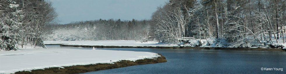 York River Study